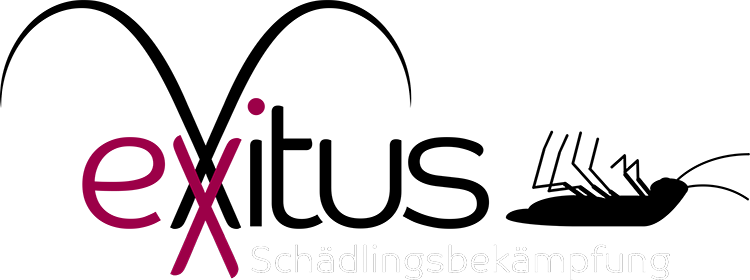 Logo Exxitus